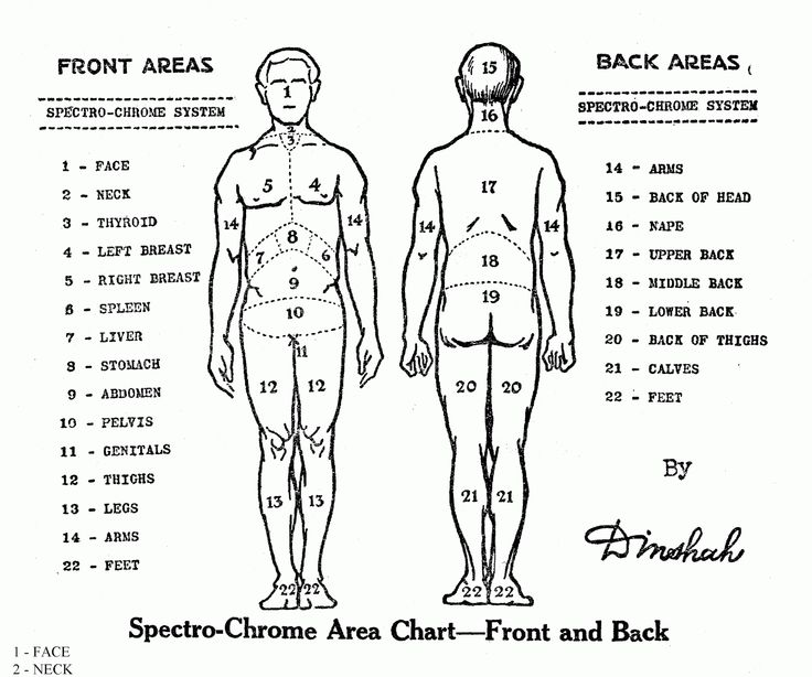 1000 Ideas About Tattoo Pain Chart Tattoo