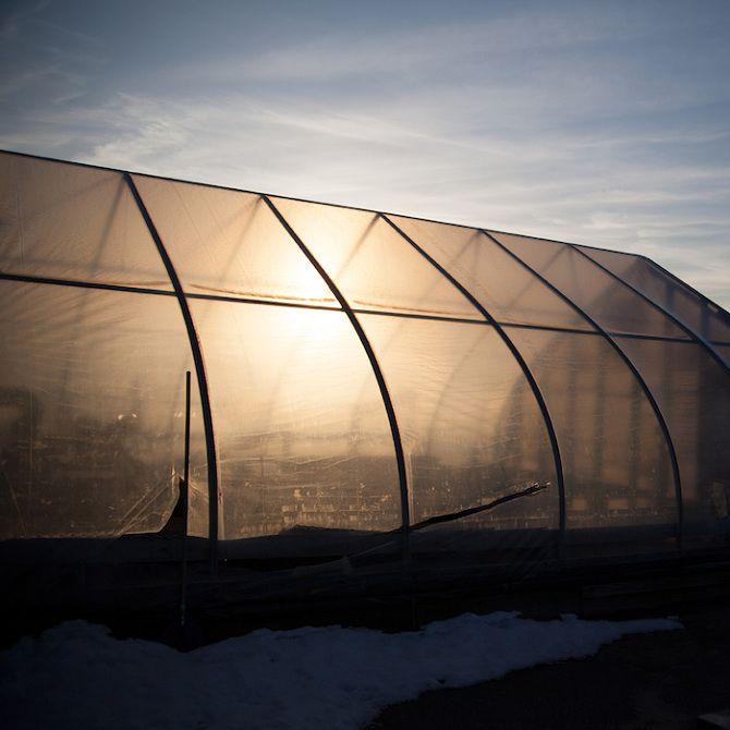 Kelly Burgess: A Farm Year - Thisispaper Magazine
