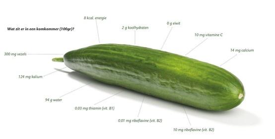 KOMKOMMER - Perfect dieetvoedsel (volgens Yolanthe Sneijders-Cabau :-) - bevat weinig calorien en bestaat voor 96% uit water
