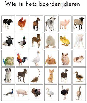 Een alternatieve kaart voor het spel 'Wie is het'. Onderwerp: boerderijdieren.