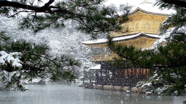 Japonsko, Kjóto, pagoda, jezero, sníh, větvičky, krása