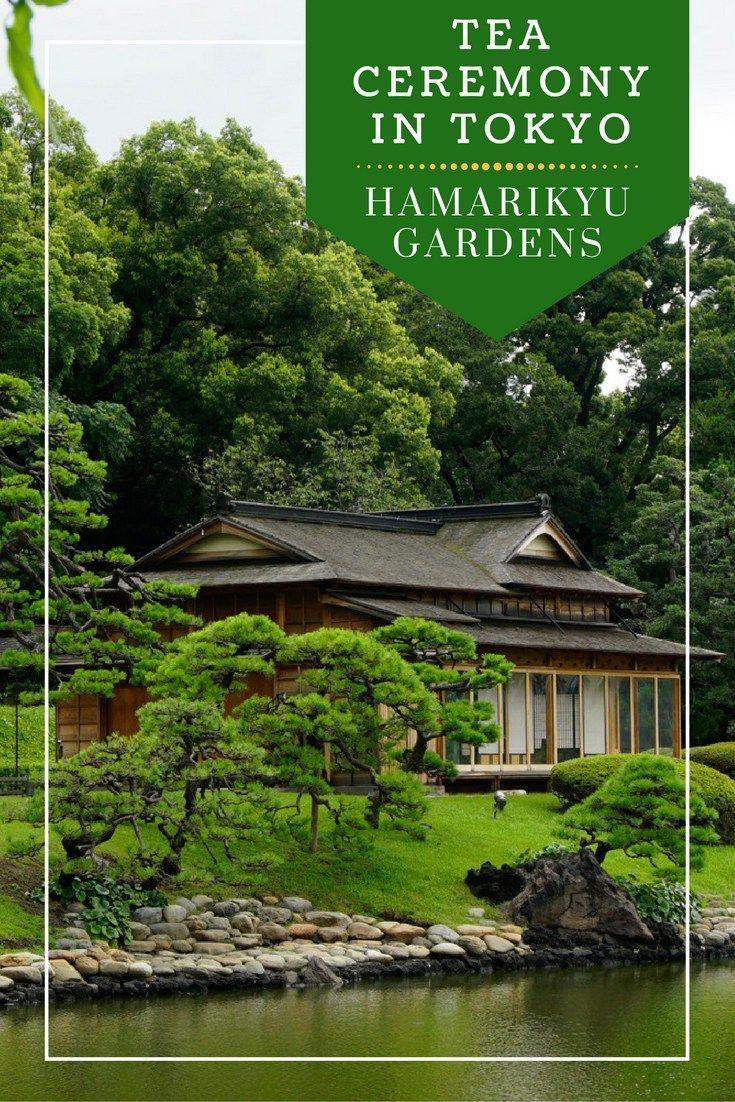 Looking for a less expensive and time-consuming tea ceremony to attend in Tokyo?…
