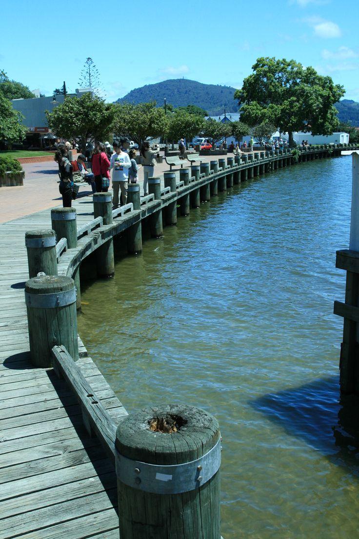 Rotorua Lakefront, NZ