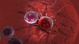 Percée médicale : tout type de cancer peut être guéri en seulement quelques mois !