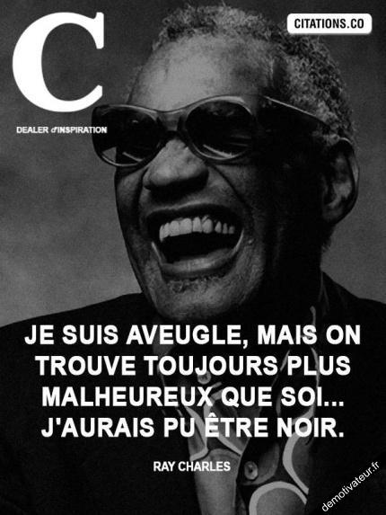 Demotivateur.fr | ray-charles