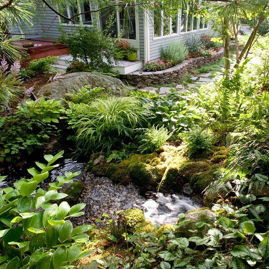 34 best landscape ideas wet areas images on pinterest for Wet garden designs