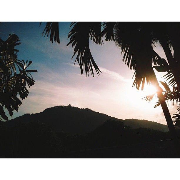 .@v_zimarin   #Thai #thailand #kata #katabeach #sugarpalmkata #sugarpalm #palm #sun #sunset...   Webstagram - the best Instagram viewer