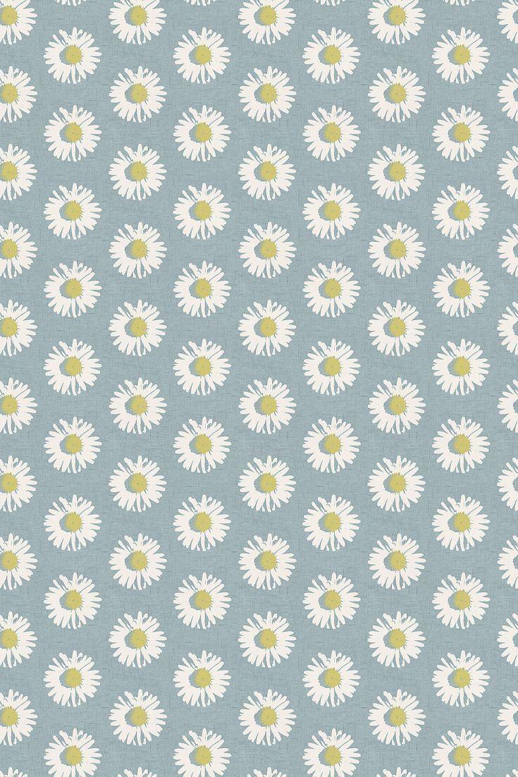 Daisy Flower Wallpaper HD Wallpaper