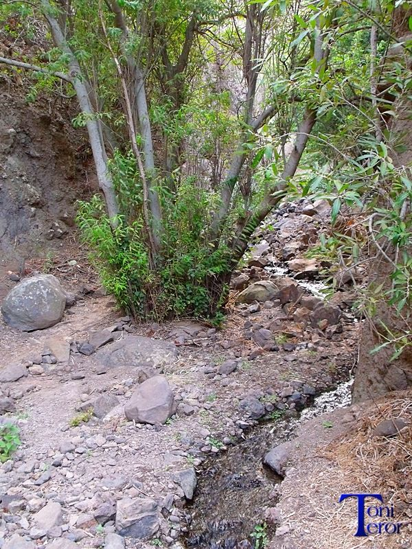 #Spain #GranCanaria #Canarias Pequeño cauce de agua