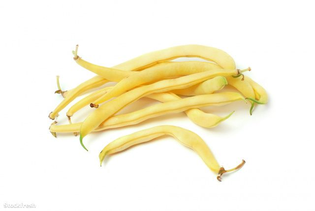 stockfresh 1131076 yellow-beans sizeM