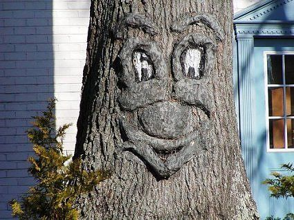 36 Best Tree Faces / Fairy Houses Images On Pinterest | Garden Art .