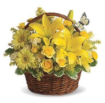 http://www.flowerwyz.com/sympathy-flowers-delivery-sympathy-gift-baskets.htm sympathy flower