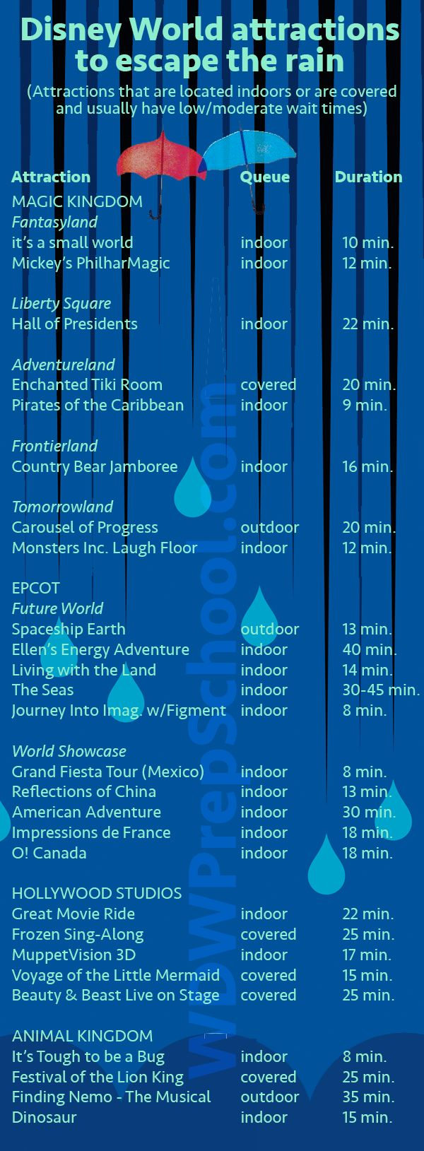 17 best ideas about weather report rain gauge how to handle the weather at disney world