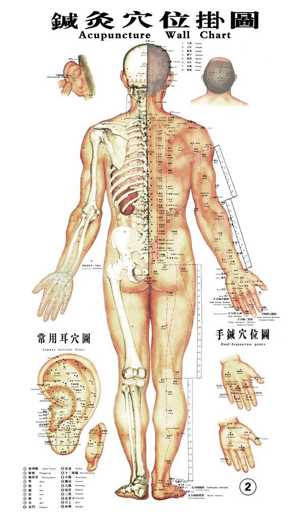 Il massaggio Tuina e la Dott.ssa Claudia Delle Donne