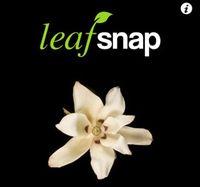 Leaf Snap : application pour reconnaître les arbres, leurs feuilles, leurs fruits, leur écorce, prendre une photo d'une feuille pour identification... Très belles photos et très instructif. En anglais uniquement dommage.