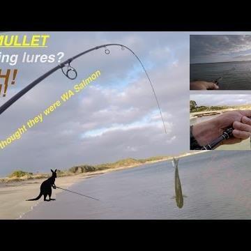 WA Salmon versus 5 different lures: https://youtu.be/8HaWEh_WP_o {#fishing #Hunting #Fish #icefishing|#camping #flyfishing #bass #bassfishing| #boat #Florida #trout #boating #fishing|#flyfishing #outdoors #vacation| #fishing #family #sea #carp|#boats #angling #lake #tuna|#ocean #Salmon #fishing #fisherman|#crappie #Retweet #Lures|#walleye #flyfishing #icefishing|#FlyTying #Salmon #steelhead #alaska| #FlyFish #catchandrelease #kayaking  #rainbowtrout| #browntrout #yellowstone #Pike…