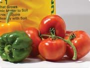 Don't let your harvest go to waste. Learn how to can your own produce.