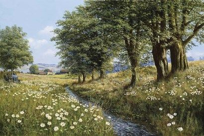 Beeches And Daisies
