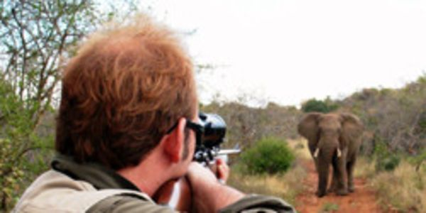 Stop Trophy Hunting, Unthinkable Cruelty