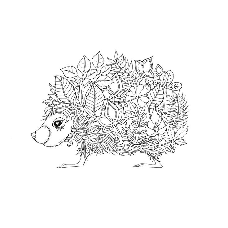 659 best Coloring Pages Animals images on Pinterest Coloring