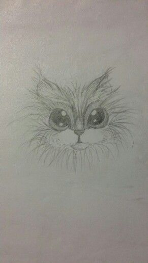 A little cute cat♡