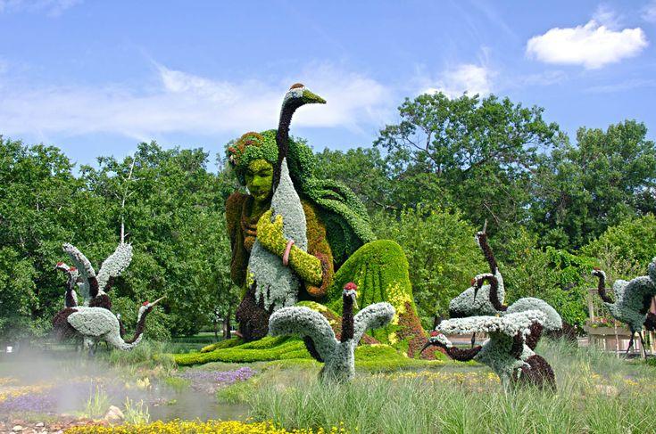 1000 images about jardin botanique on pinterest gardens for Biodome insectarium jardin botanique