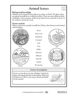 3rd grade 4th grade science worksheets animal habitats summer camp animal habitats. Black Bedroom Furniture Sets. Home Design Ideas