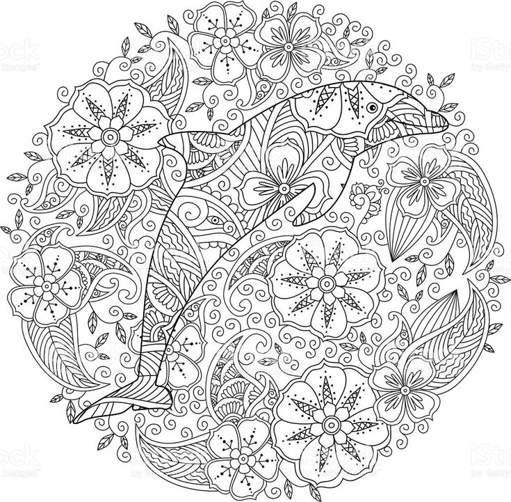 dolphin coloring pages coloring dolphin whale shark のおすすめ画像 315 件 1891