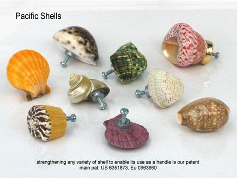 14 best Shell knobs images on Pinterest | Cabinet knobs, Door ...