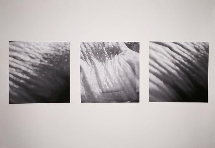 2016/photography/collage  併置についての考察・連作。