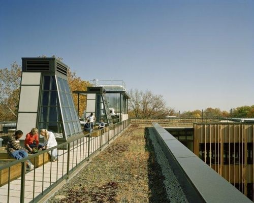 Construction of a green roof on top of Washington DC's Sidwell Friends School   Chapel Valley