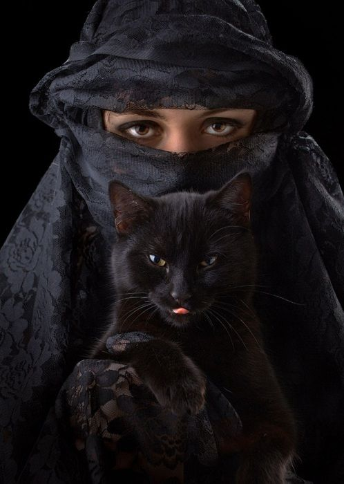 black power: Black Is Beautiful, Black Kitty, Cat Eye, Chat Noir, Black On Black, Photo, Black Cat, Blackcat, Animal