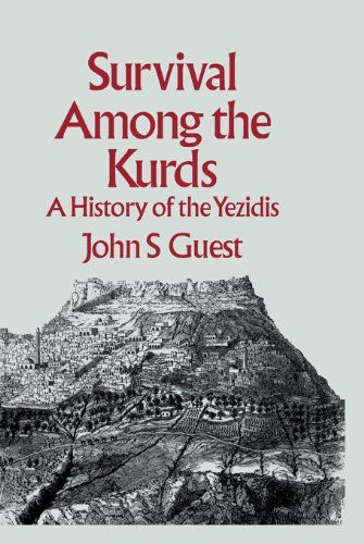 Image result for yazidis book cover