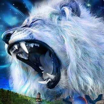 God Quotes Wallpaper White The Lion Of The Tribe Of Judah White Lion Roaring Please