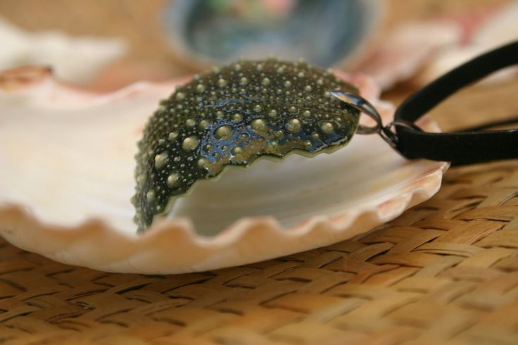 Necklace made of the shell of a sea urchin called Kina - proudly handcrafted in New Zealand. #jewelry #handmade