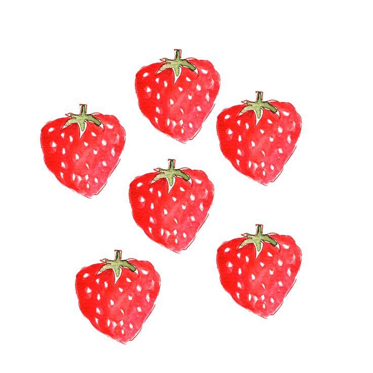illustration fraise à l'aquarelle