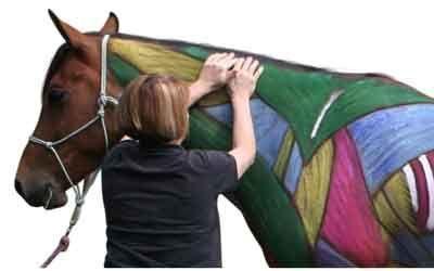 Equine Massage Tips