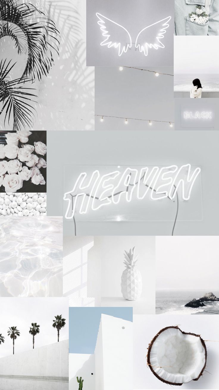 Iphone Wallpapers – White aesthetic iPhone wallpaper🐚🥥🐑🌫