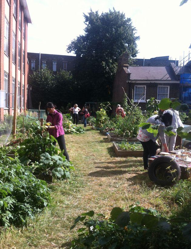 Everybody working in the garden