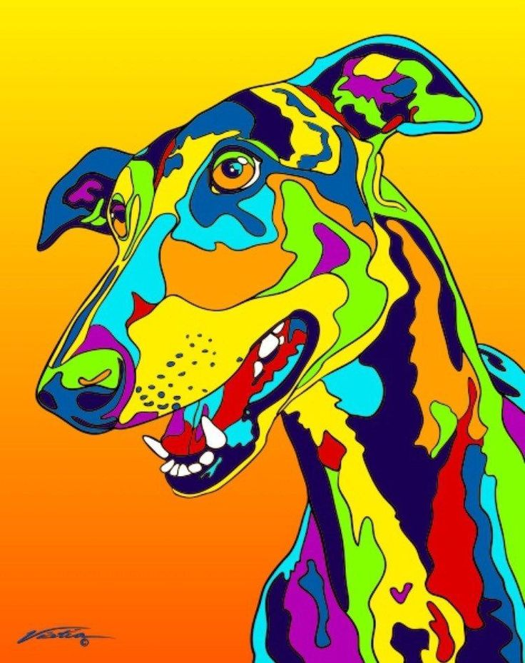 Multi-Color Greyhound Dog Breed Matted Prints & Canvas Giclées #dogbreeds