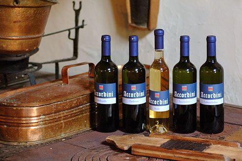 Vini Bianchi - Accordini