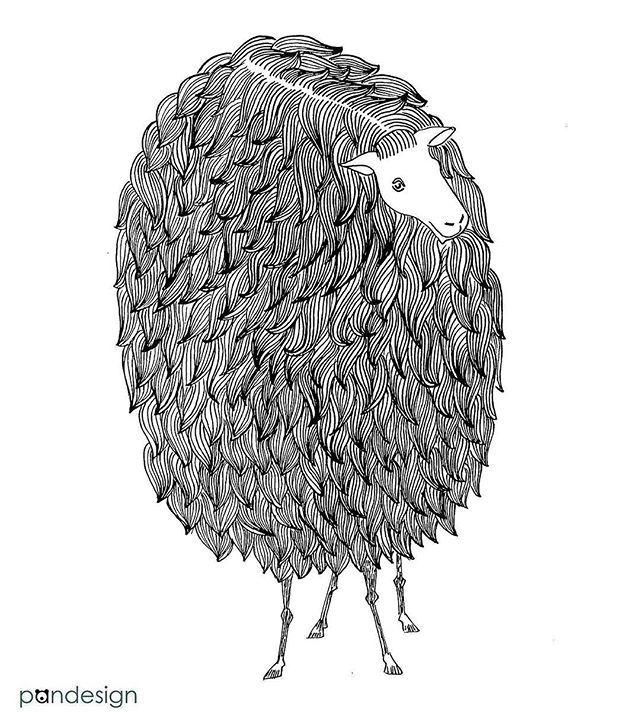 🐑✒ Have a nice day :) #sheep #illustration #lamb #curly #sheepillustration #sheeptattoo #drawing #pencildrawing #pandesign #studio #art #zentangle #zentanglesheep #bnw #bnwillustration #blackandwhite #pandesign_studio #tagforlikes #tattart #tattart #tattoodesign #tattoo #followforfollow #fleece #warm #niceday  sheep illustration by Moran Bazax   Pandesign Studio
