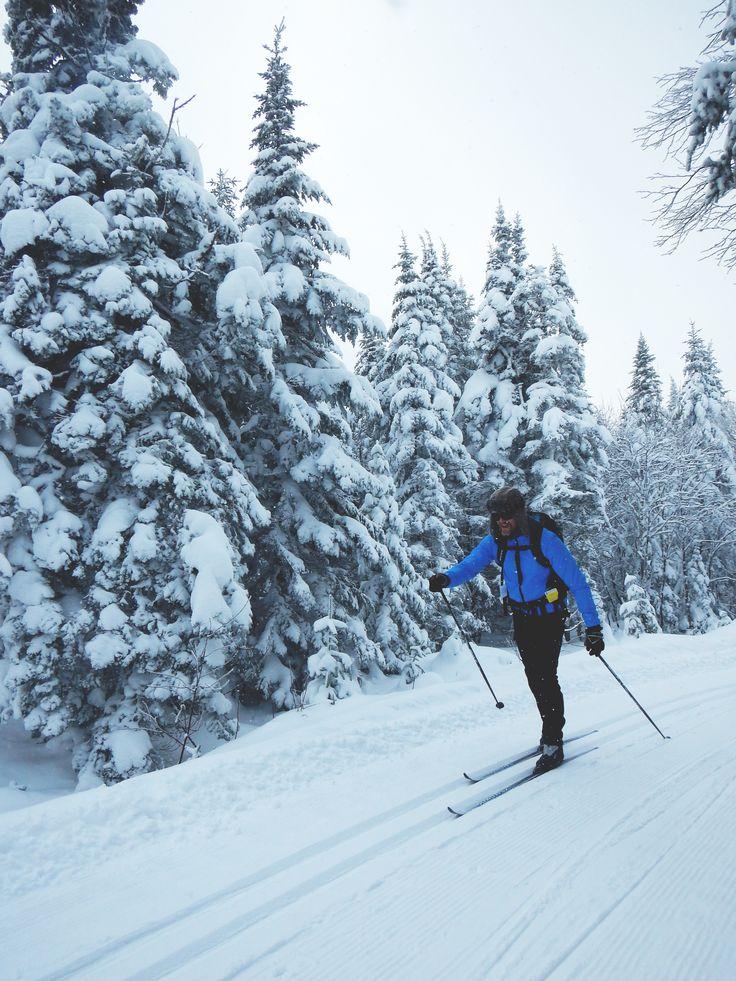 Ski de fond- Station touristique Massif du Sud