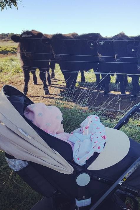 #babybeeprams  (pic by @tynealaddie)