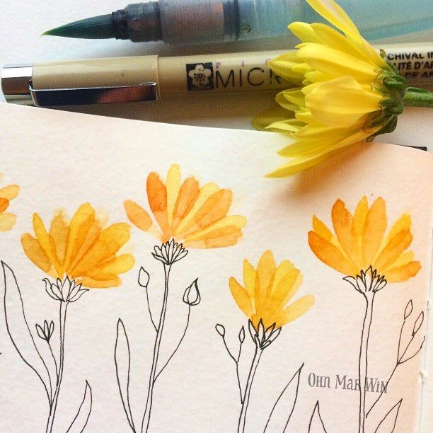Watercolor flower petals with pen and ink stem and leaves...@ohn_mar_win on Instagram: simple bright florals--Watercolour with Micron pen line