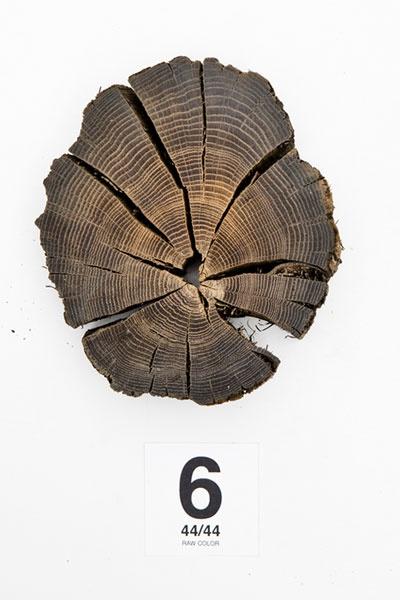 clean cut log