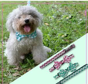Durable Dog Collars & Leads Adjustable Orange Nylon Hunting Dog Collars in Webbing - free shipping worldwide