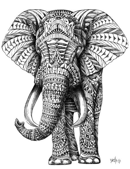 """""""ornate elephant"""" - pen and ink drawing by ben kwok"""