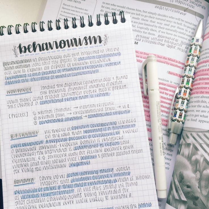"studysthetics: "" 9 April ~ notes for an ethics essay. I love when my subjects crossover because it makes it so easy haha (﹡ˆᴗˆ﹡) from my ig: instagram.com/studysthetics """