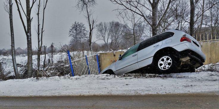 Germanys self-driving car solution: Kill animals damage property protect humans